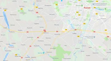 Bus zderzył się z autem osobowym na A2 pod Poznaniem. Nie żyje jedna osoba, a cztery są ranne